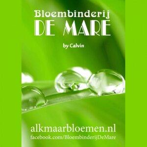 Bloembinderij De Mare logo