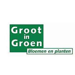 Groot in Groen logo