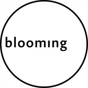 Blooming Bedrijvengroep B.V. logo