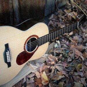 De Haan Guitars image 3