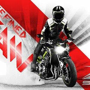 Lemstra Motoren image 2