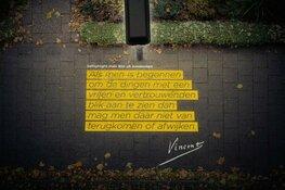 Van Gogh verlicht Alkmaar