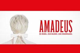 West End theaterspektakel AMADEUS komt naar Alkmaar Kaartverkoop TAQA Theater De Vest is gestart