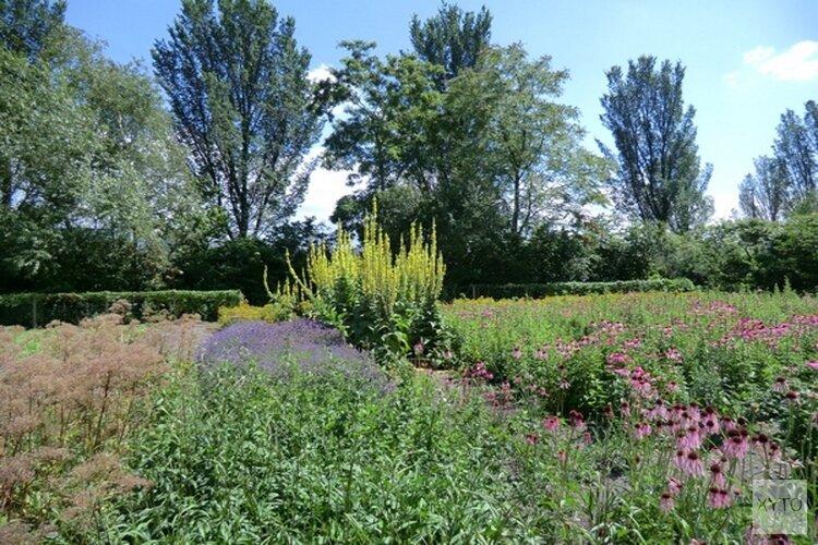 Gemeente Alkmaar steunt Hortus Alkmaar met vervangende grond