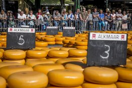 Opening Kaasmarktseizoen Alkmaar in teken van EK wielrennen