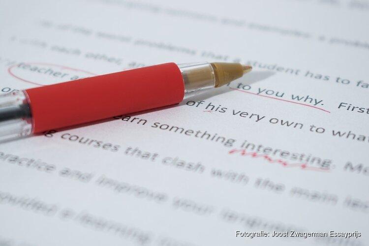 Gezocht: getalenteerde essayisten