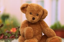 Ontmoetingsmoment voor ouders die een kindje verloren tijdens zwangerschap