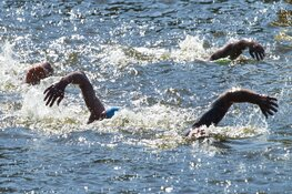 Alkmaar Sport organiseert Open Water Swim Events