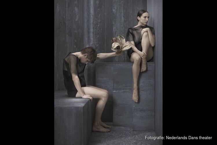 Nederlands Dans Theater te zien in Alkmaar