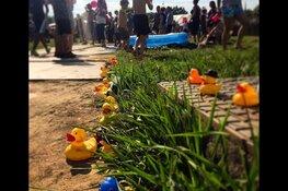 Woodlands festival komt weer tot bloei