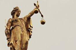"""120 uur taakstraf na bloederig bijtincident: """"Verdachte had rottweiler moeten muilkorven"""""""