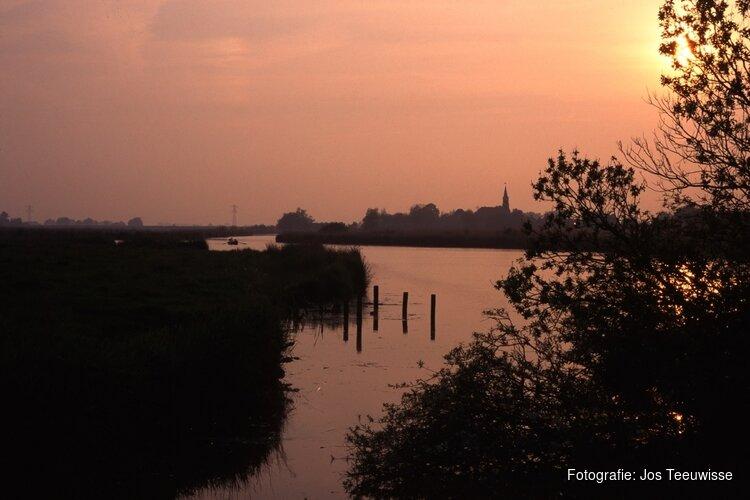 Nacht van de Vleermuis, avondvaartocht door Eilandspolder