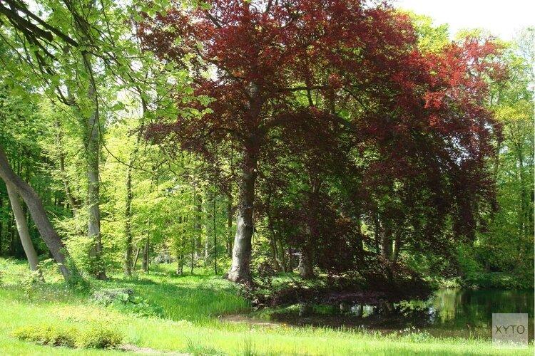 Bezoek de tuinen van Landgoed Nijenburg