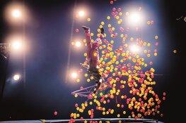 Vestival International: theaterpareltjes van over de hele wereld-  TAQA Theater De Vest presenteert unieke niet- talige voorstellingen met korting