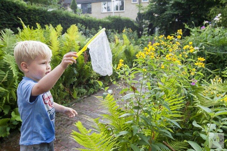 Alkmaar gaat voor groene tuinen