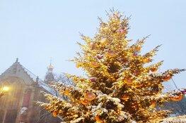 'Geef door' onder de Kaaskerstboom