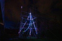 Kerstboom Scouting Graaf Daron