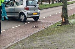 Auto rijdt tegen boom in Johanna Naberstraat