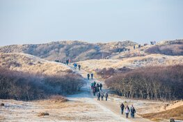 13.200 wandelaars naar de Egmond Wandel Marathon op 25 en 26 januari