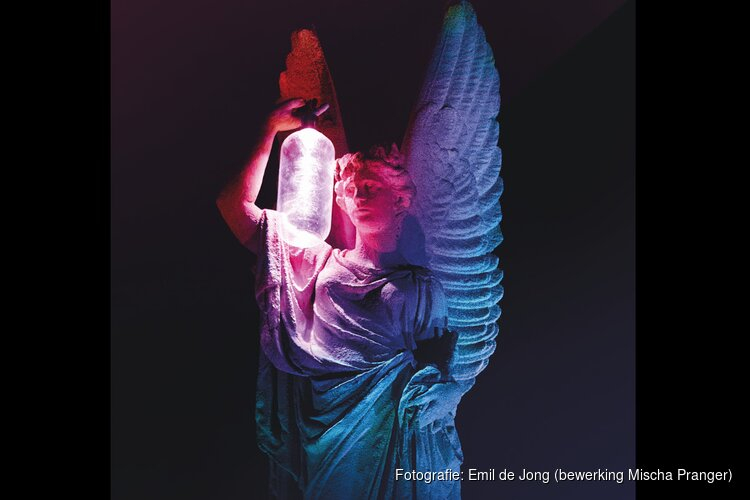 Nieuwe lichtkunstfestival in Victoriepark Alkmaar