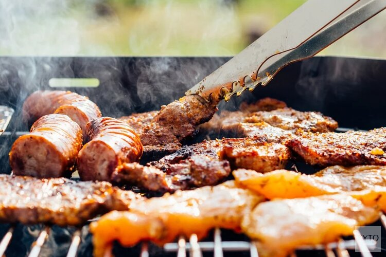Na overlastklachten is barbecueën en hard geluid vanaf nu streng verboden in Alkmaars park