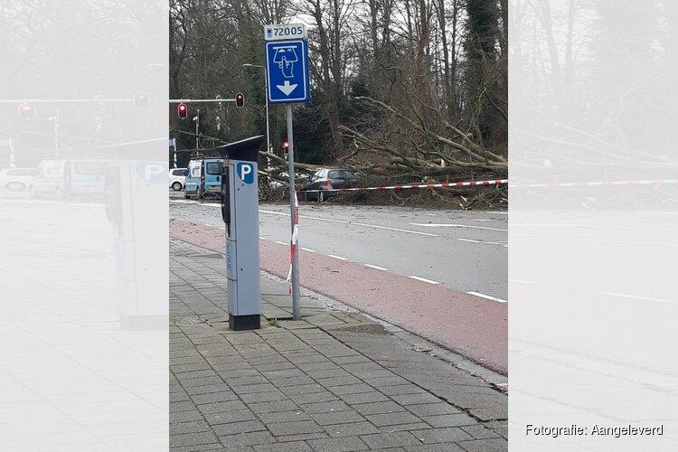 Storm treft Alkmaar